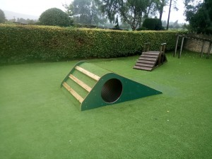 Up Over Through Tunnel on Artificial Grass